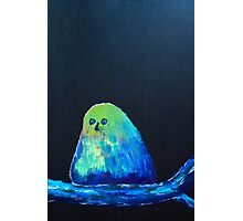 blue bird of happiness on a black background Photographic Print