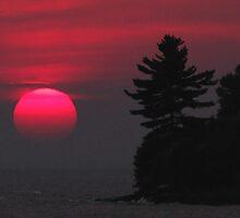 Summer Sunset by Janet Gosselin