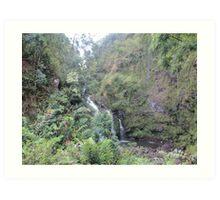 Hawaii Waterfall Art Print