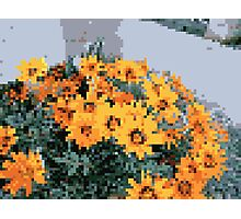 8bit orange things Photographic Print