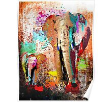 African Elephant Family Poster