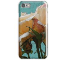 Apricot Nectar Rose iPhone Case/Skin