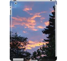 Suburban Sunset iPad Case/Skin