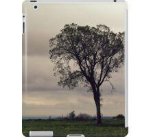 The guardian iPad Case/Skin