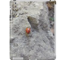 ladybug on rock iPad Case/Skin