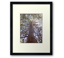 tree of a creature Framed Print