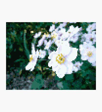 different 8bit flower Photographic Print