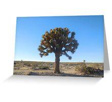 joshua tree (large) Greeting Card