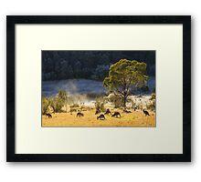 Australian Winter Framed Print