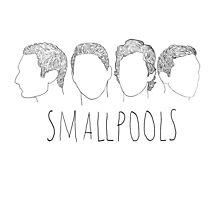 Smallpools cartoon heads design by Dalal Semprun