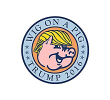 Wig on a Pig Photographic Print