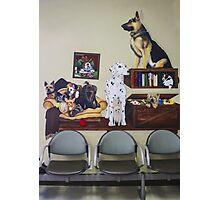 Vet's Waiting Room! Photographic Print