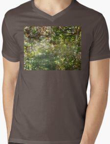 spirit & butterfly Mens V-Neck T-Shirt