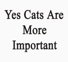 Yes Cats Are More Important  by supernova23