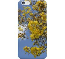 Springtime Tree with Yellow Flowers iPhone Case/Skin