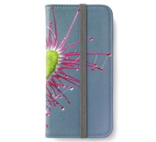 SUNDEW iPhone Wallet/Case/Skin
