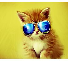 Cute Kitty with Sunglasses Photographic Print