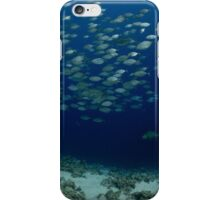 Jackfish over humphead over the saddle.... iPhone Case/Skin