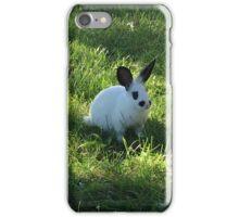 Dan the Bunny in the Grass iPhone Case/Skin