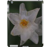 John Quill iPad Case/Skin