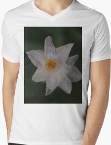 John Quill Mens V-Neck T-Shirt