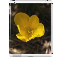 1st Crocus #2 iPad Case/Skin