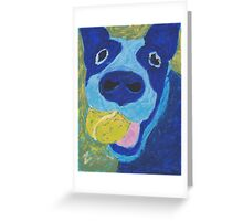 bleu heeler Greeting Card