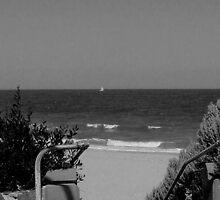 Hampton Beach  Victoria  Australia by bayside2