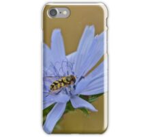 Insect on a Blue Flower iPhone Case/Skin