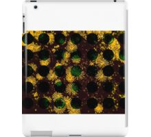 Vintage retro Autumn feel iPad Case/Skin