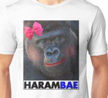 Harambae Unisex T-Shirt