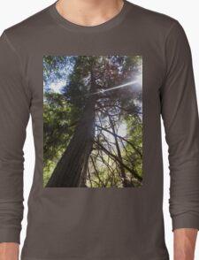 stretching tree Long Sleeve T-Shirt