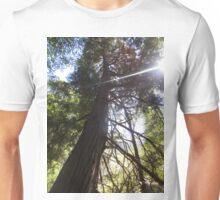 stretching tree Unisex T-Shirt