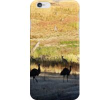 Australian emus and kangaroos at sunrise iPhone Case/Skin