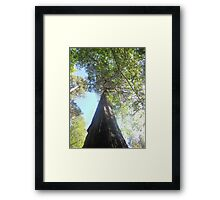 guide me Framed Print