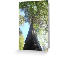 guide me Greeting Card