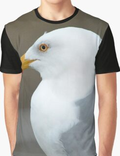 Larus Smithsonianus - American Herring Gull Detail | Gilgo-Oak Beach-Captree, New York Graphic T-Shirt