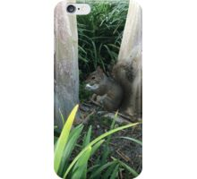 Squirrel enjoying a popcorn kernel iPhone Case/Skin
