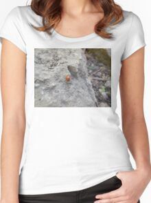ladybug on rock Women's Fitted Scoop T-Shirt