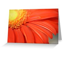 Pretty in red Greeting Card