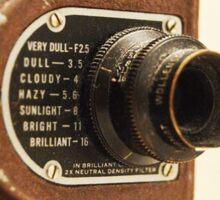 Old Brown Camera Sticker