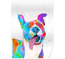 Pit Bull Terrier Pop Art Pet Portrait Poster