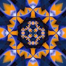 Bold blue and orange organic pattern by Celeste Mookherjee
