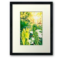 Adlerfarn Framed Print