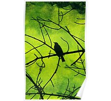Bird Branches [Green] Poster