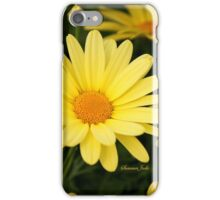 Just Call Them Mellow Yellow ~ Daisies iPhone Case/Skin