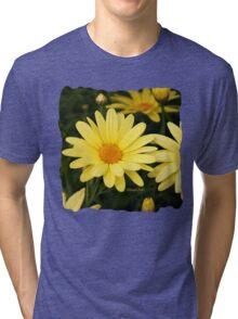 Just Call Them Mellow Yellow ~ Daisies Tri-blend T-Shirt
