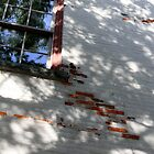 Erie, PA: Shadows on Worn Bricks by ACImaging