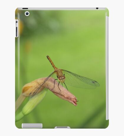 Dragon Fly Catching A Breeze             Pentax X-5 Series 16 mp iPad Case/Skin
