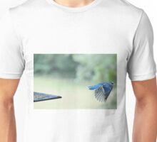 Bluejay in flight Unisex T-Shirt